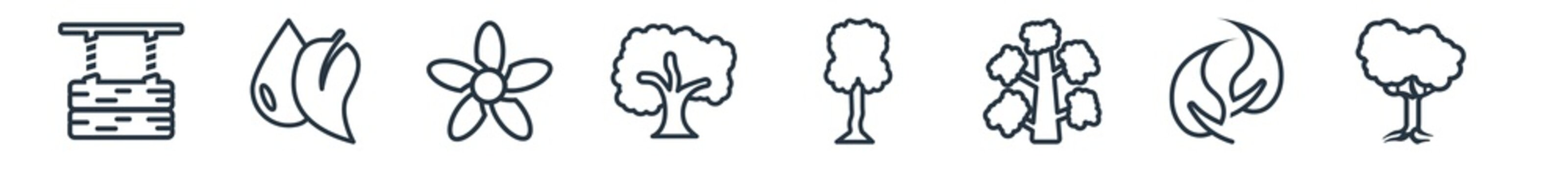 linear set of nature outline icons. line vector icons such as wood board, leaf and drop, jonquil, sycamore tree, honey-locust tree, black locust tree vector illustration.