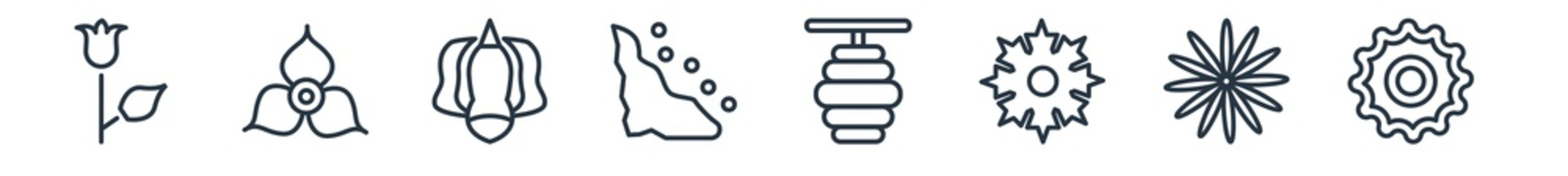 linear set of nature outline icons. line vector icons such as bell, bougainvillea, ylang-ylang, cliff, hive, bergamot vector illustration.