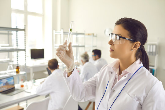 Side view young female scientist in coat, gloves and goggles looking at small green leaf inside test glass tube in her hand. Nature and science, using plants in cosmetology laboratory research concept
