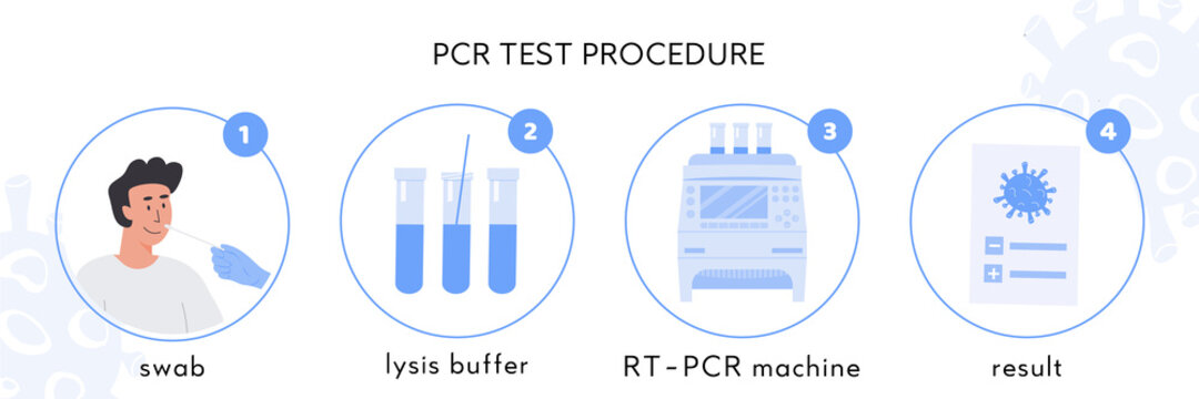 Covid-19 test procedure Infographic. A doctor in latex gloves takes nasal swab test. Male patient doing Coronavirus testing. Swap sample in lysis buffer, RT PCR machine and certificate. Vector.