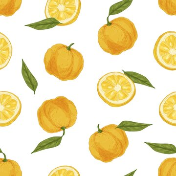 Seamless tropical pattern with yuzu and leaves on white background. Endless repeatable texture with yellow Japanese citrus fruits for wrapping. Colored hand-drawn vector illustration for printing
