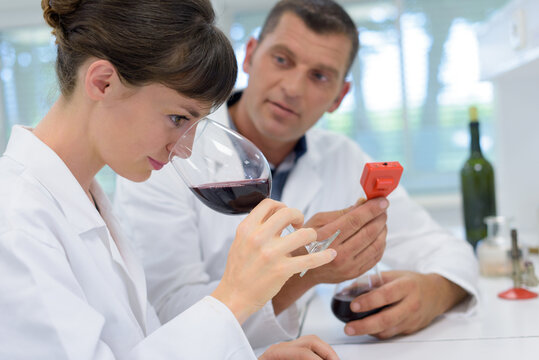 the oenologists analyzing a wine