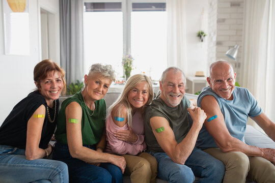 Group of senior friends showing plaster on arm indoors, covid-19 vaccination concept.