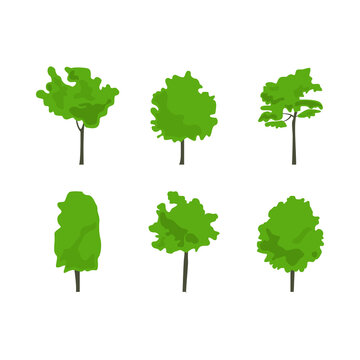 Flat icon tree collection in color isolated on white background. Green forest. Ecology concept.