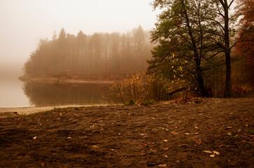 Mglisty poranek nad jeziorem. Jesienny kolorowy las.
