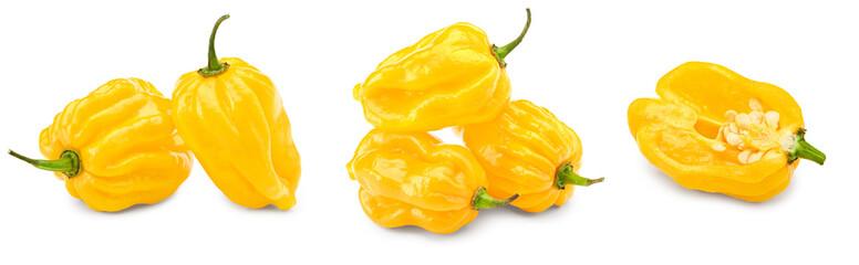 Fototapeta Habanero chili yellow hot pepper isolated on white background. clipping path obraz