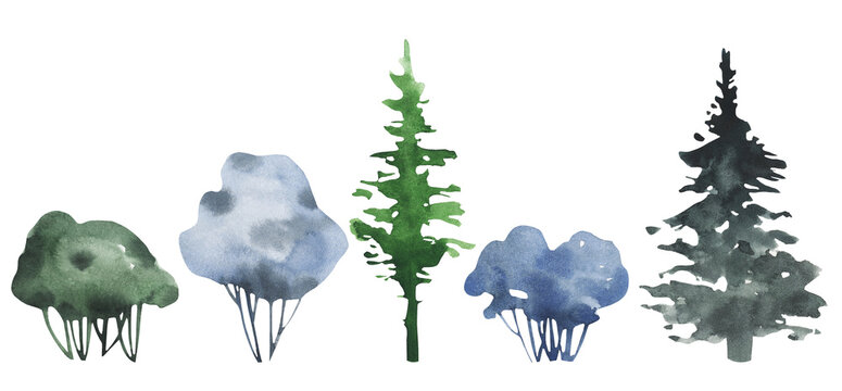 Hand drawn watercolor pine trees and shrubs bush aquarelle set.
