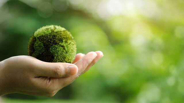 Close up of hands holding the earth on a green background. protect nature. Save Earth. concept of the environment World Earth Day