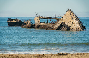 Obraz Seacliff State Beach and the S.S. Palo Alto - fototapety do salonu