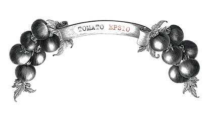 Fototapeta Tomato branding design for product label hand draw vintage engraving style black and white clip art isolated on white background2 obraz