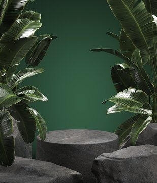 Empty stone podium for display product with tropical leaves. 3d illustration