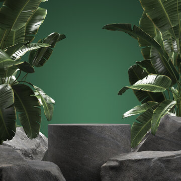 Empty stone podium with tropical leaves. 3d illustration
