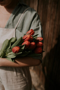 woman holding bouquet of red tulips in spring