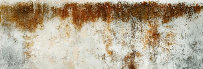 Obraz Porysowana, skorodowana tekstura, tło starego muru ogrodzeniowego. Kolory korozji w stonowanych odcieniach szarości. niebieskiego i brązu.. Panorama. - fototapety do salonu