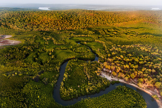 Remote wilderness northern Australia, watercourse and forest