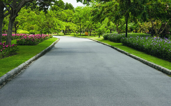 A walkway or jogging track in a park with blooming flowers.