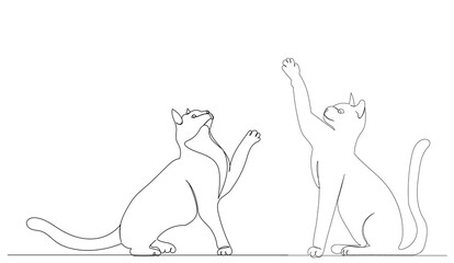 cats drawing by one continuous line sketch, isolated, vector