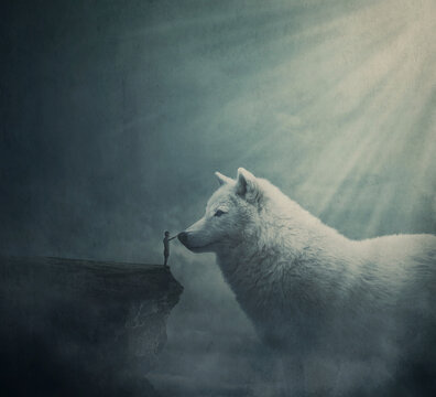 Surreal dreamland scene with a person on the edge of a cliff try to get in touch with a huge white wolf. Fantasy adventure, wanderer taming a giant mythical creature. Magical tale landscape