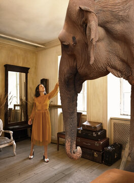 Young woman strokes the trunk of an elephant in the living room at home