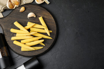 Fresh baby corn cobs served on black table, flat lay. Space for text