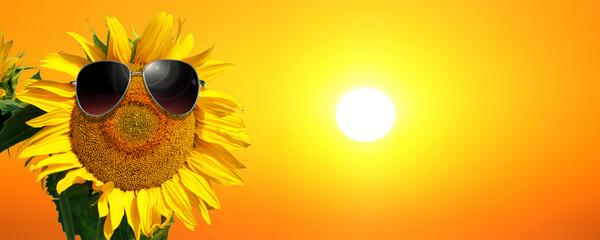 Obraz Sonnenblume mit Sonnenbrille - fototapety do salonu