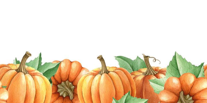Pumpkin seamless border. Watercolor illustration. Hand drawn seamless border from orange autumn pumpkins, leaves. Bright thanksgiving harvest decor. Fall season decoration. White background