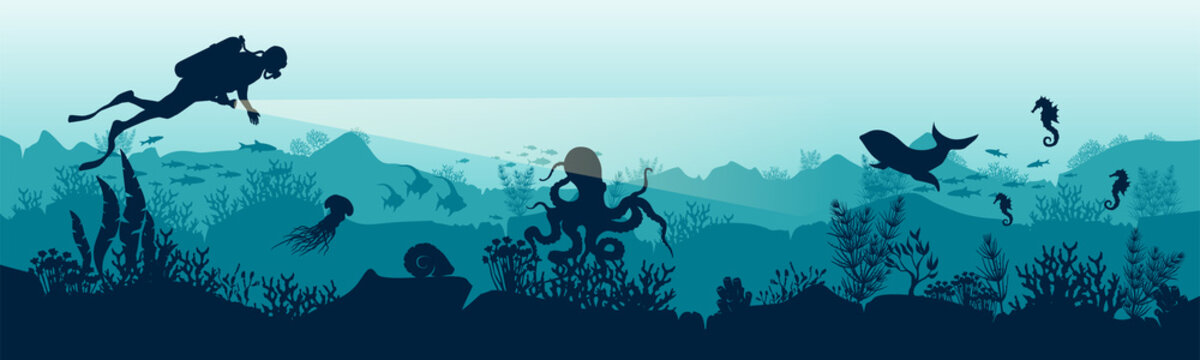 Silhouette of a scuba diver in the underwater world. The diver is watching the fish. Stock vector illustration. EPS 10. Panoramic view of the underwater world. Illustration for underwater tourism.