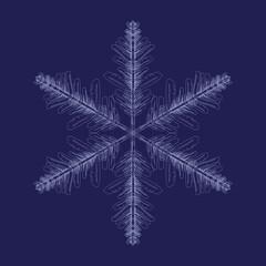 Fototapeta płatek śniegu obraz