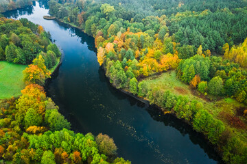 River and autumn forest. Aerial view of nature in Poland