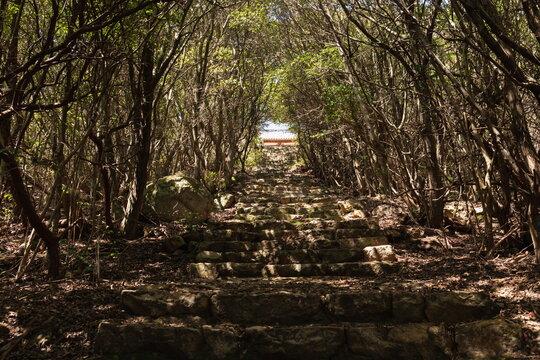 Japanese shrine at shonai peninsula , old long stone stairs to shrine , mitoyo city, kagawa, Shikoku, Japan