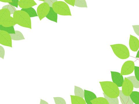 葉のイラストのフレーム