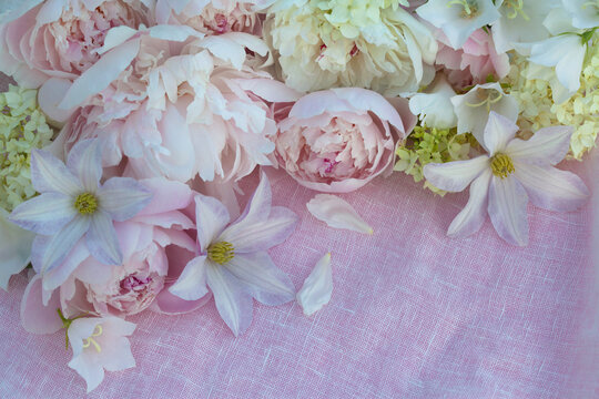 Floral background with pink peonies, hydrangea, cosmeya and flowers bells for congratulations, wedding, mother's day, birthday