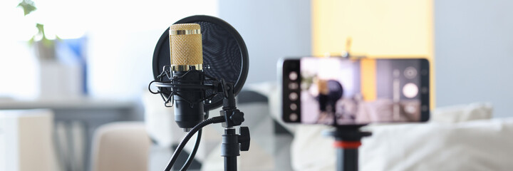 Professional microphone standing near video camera closeup