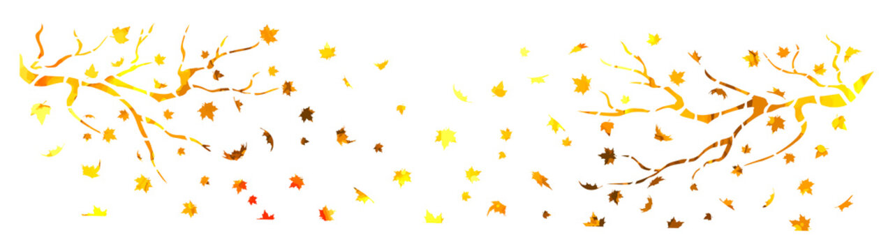A bare tree is autumn with falling yellow leaves. Vector illustration