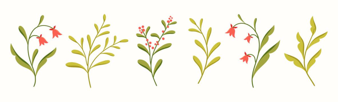 Vector set of floral elements design. Modern illustration with leaves for template, logo, print design, social media.