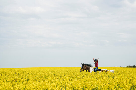 Carefree girl riding horse in sunny yellow canola field