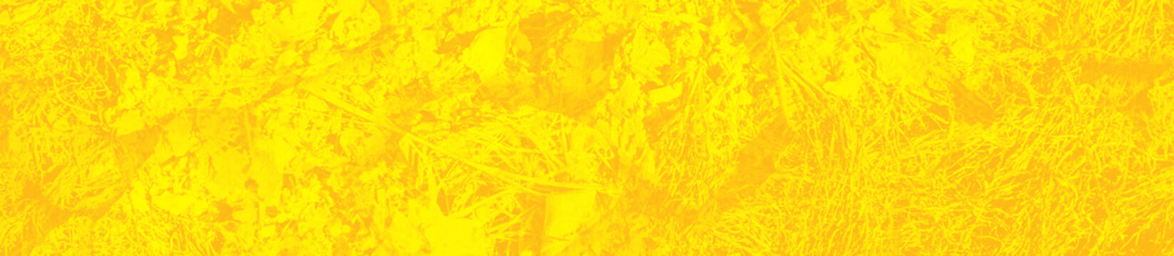 abstract yellow bright background for design