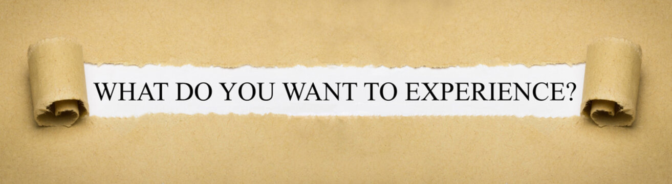 What do you want to experience?