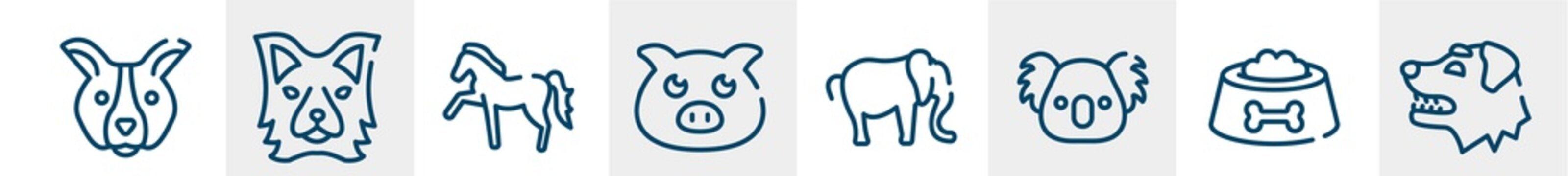 woof woof line icons such as dog face, border collie head, horse with leg up, farm pig, elephant alone, border collie dog head outline vector sign. symbol, logo illustration. linear style icons set.