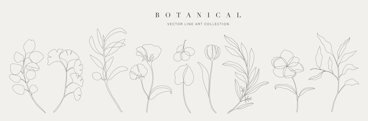 Fototapeta Botanical arts. Hand drawn continuous line drawing of abstract flower, floral, ginkgo, rose, tulip, bouquet of olives. Vector illustration. obraz