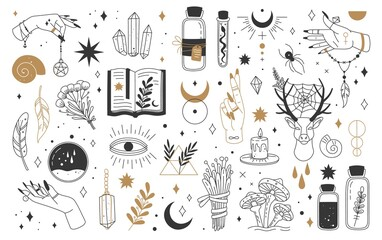 Obraz Mystic and esoteric elements. Moon, witch hands crystals, potions flowers. Mystical astrology, magic witchcraft occult symbols vector set. Bottles with poison, talisman and feathers - fototapety do salonu