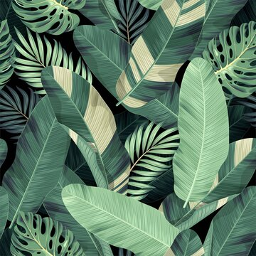 Vector seamless pattern with exotic palm leaves