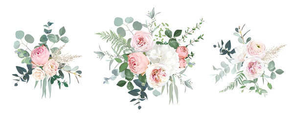 Fototapeta Blush pink garden roses, ranunculus, hydrangea flowers vector design bouquets obraz