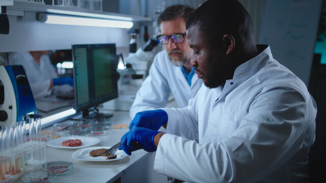 Diverse scientists trying cell meat