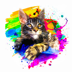maine coon colorful artistic cat muzzle with bright paint splatters on white background