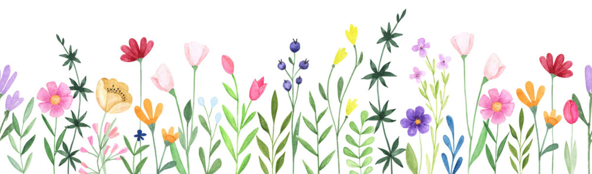 Watercolor floral seamless stripe. Hand drawn abstract wildflowers