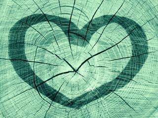 Fototapeta Serce na zielonym tle obraz