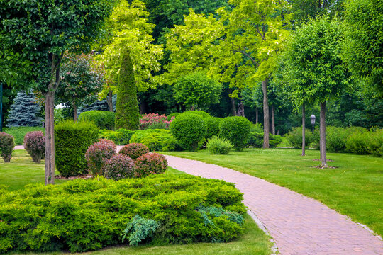 curved pedestrian walkway of stone tiles in park with landscape design with green plants bushes and trees, landscaped of thujas and deciduous buhes on the lawn, nobody.