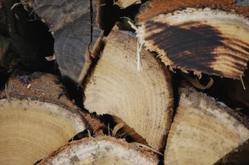 Fototapeta Drewno, opał, martwa natura, drewno do kominka obraz