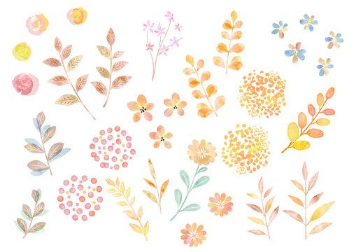 水彩ベクター 秋の植物のイラストセット